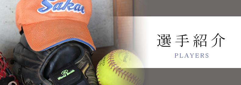 埼玉栄ソフトボール部のキャップやグローブ、ボールが背景の選手紹介ページ見出し